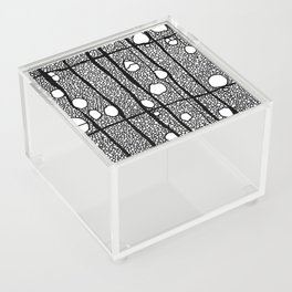 Wrinkle in time Acrylic Box