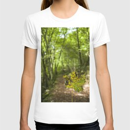 A leaf in the walk path T-shirt
