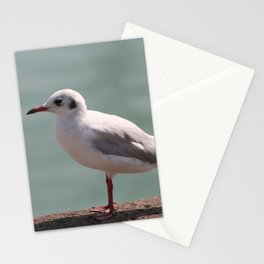 mouette Stationery Cards