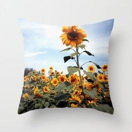 Sunflower Photograph Throw Pillow
