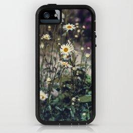 Daisy IV iPhone Case