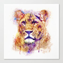 Lioness Head Canvas Print