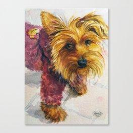 Sassy Sophie the Yorkie Puppy Canvas Print