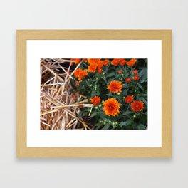 Autumnal Bouquets Framed Art Print