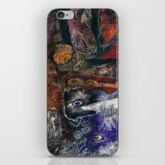 Seen and Unseen iPhone & iPod Skin