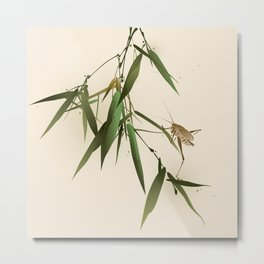 A grasshopper on bamboo leaves Metal Print