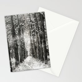 Infrared and symmetry Stationery Cards