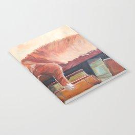 Red cat on a bookshelf Notebook