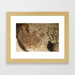 ;-)   Framed Art Print