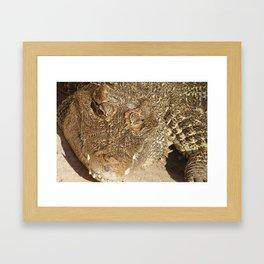 ;-)   Framed Art Print