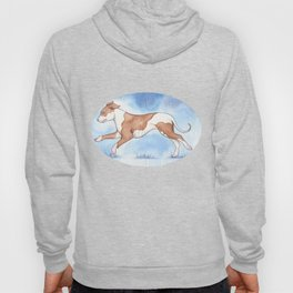 Pit bull Rescue Hoody