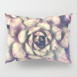 Sempervivum, Succulent Red  Mandala Pillow Sham