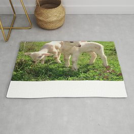 Spring Lambs Grazing On Farmland Rug