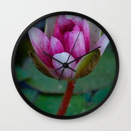Water Lily 4 Wall Clock