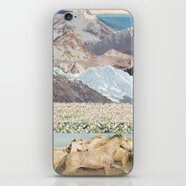 Washes iPhone Skin