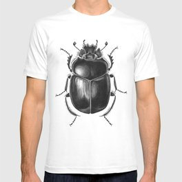 Beetle 13 T-shirt