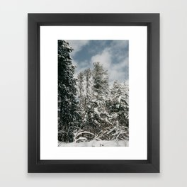 Snowy Trees   Nature and Landscape Photography Framed Art Print