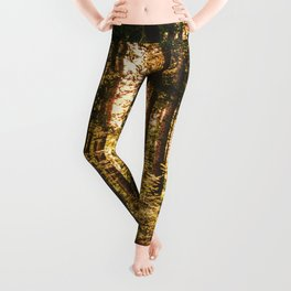 Woods  - Forest, green trees outdoors photography Leggings