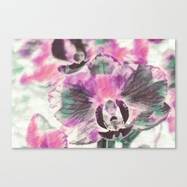 Orchid flowers in watercoloring style Canvas Print