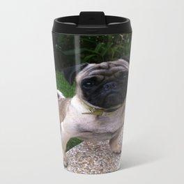 Pancho Posing in Garden Travel Mug