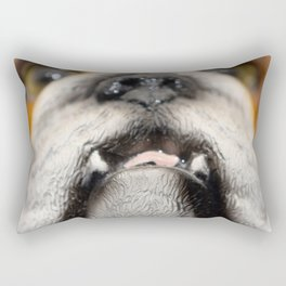 love, print, bulldog, canine, collection, icons, portrait, breed, pedigree, face, puppy, cartoon, ba Rectangular Pillow