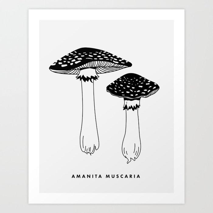 Amanita Muscaria Mushrooms Art Print