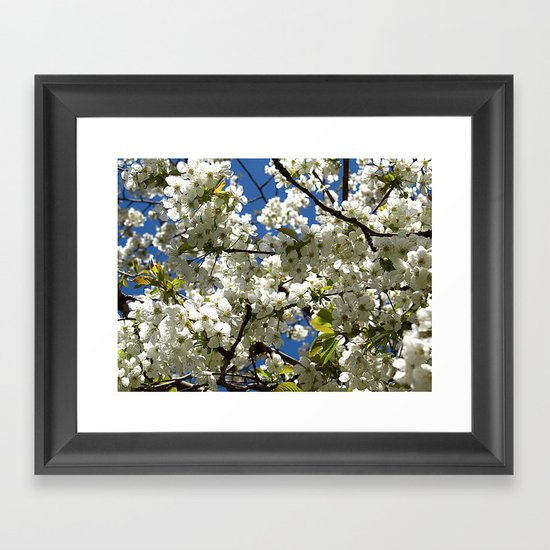 SRING BLOSSOM Framed Art Print