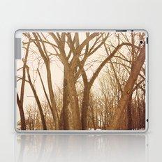 Resting Trees Laptop & iPad Skin