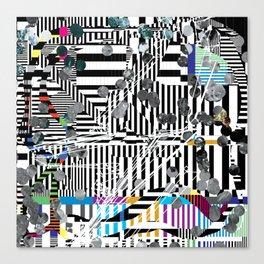 2119.01.44 Canvas Print