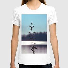 Concept nature : respice finem T-shirt