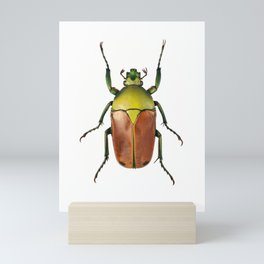 Cyprolais Selene Mini Art Print