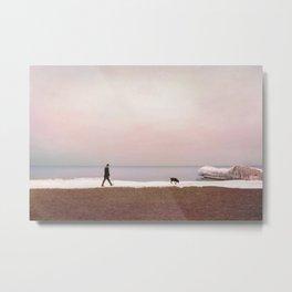 Winter at Lake Ontario Metal Print
