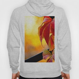 Autumn red vine leaves and yellow background Hoody