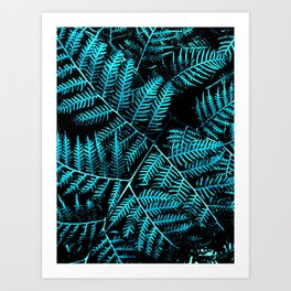 Teal Bracken Art Print