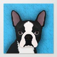 boston terrier Canvas Prints featuring Boston terrier by Nir P