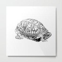 box turtle drawing Metal Print