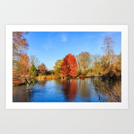 Winter Lake Scene Art Print