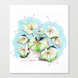 Plenty of Plants Canvas Print