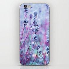 lilac love iPhone & iPod Skin