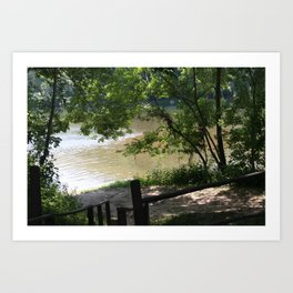 Watercress Beach Art Print