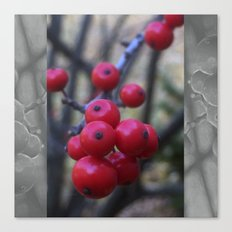 Late Winterberry Canvas Print