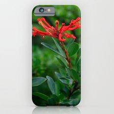 Notro flower iPhone 6s Slim Case