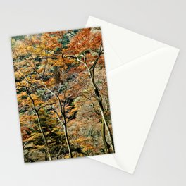 Autumn Trees in Minoo, Japan Stationery Cards