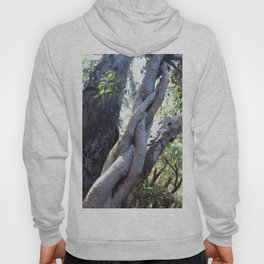 Twisted ficus forest Hoody