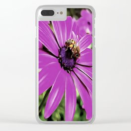 Honey Bee On A Spring Flower Clear iPhone Case
