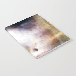 Moth 1 Notebook