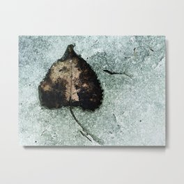 Bidirectional Metal Print