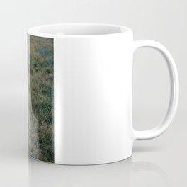 Lone Lion. Coffee Mug