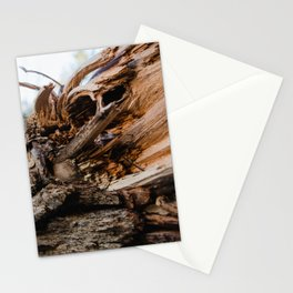 Winter wood Stationery Cards