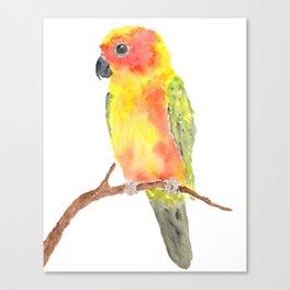 Parrot bird Canvas Print